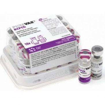 Od června máme opět skladem vakcínu Purewax RCPCH pro kočičky