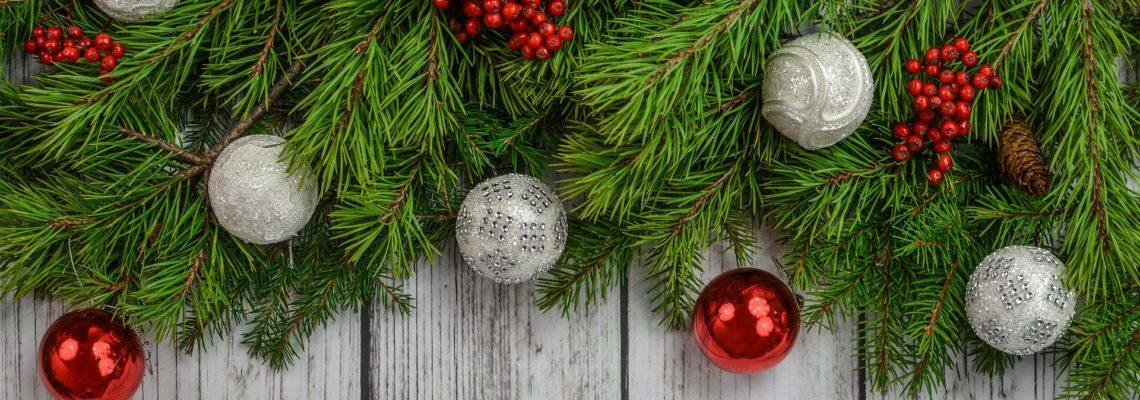 Ordinační hodiny v období Vánoc 2019  a  Nového roku 2020 zde