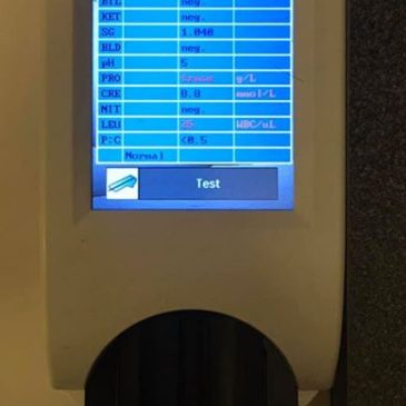 Technologické novinky – močový analyzátor InSight