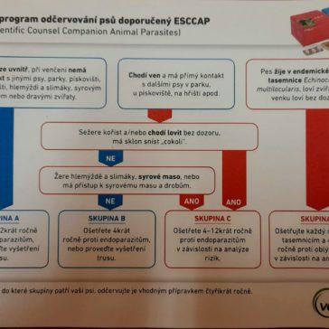 Preventivní program odčervování psů doporučený ESCCAP